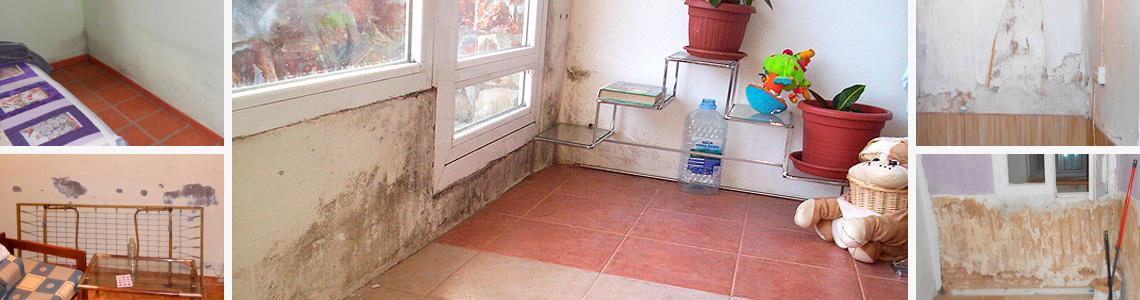 humedad en paredes muros