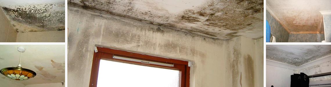 humedades en el techo