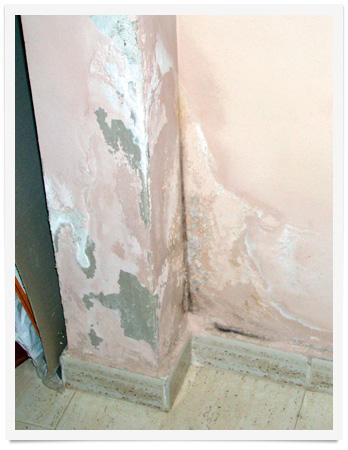 humedades capilaridad pared