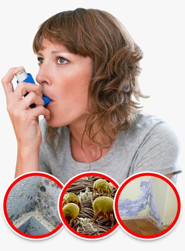 humedades capilaridad salud