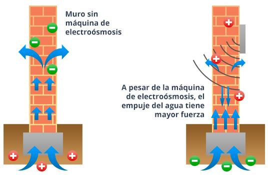 electrsmosis muro