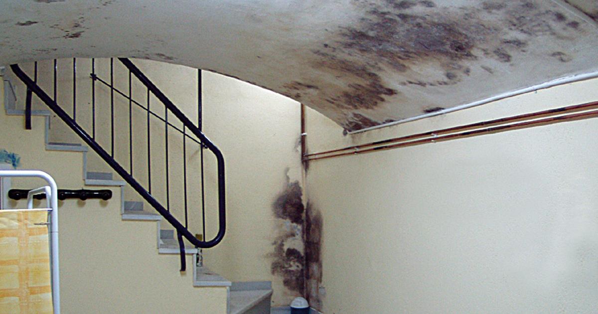 quitar humedades en s tanos y garajes murprotec
