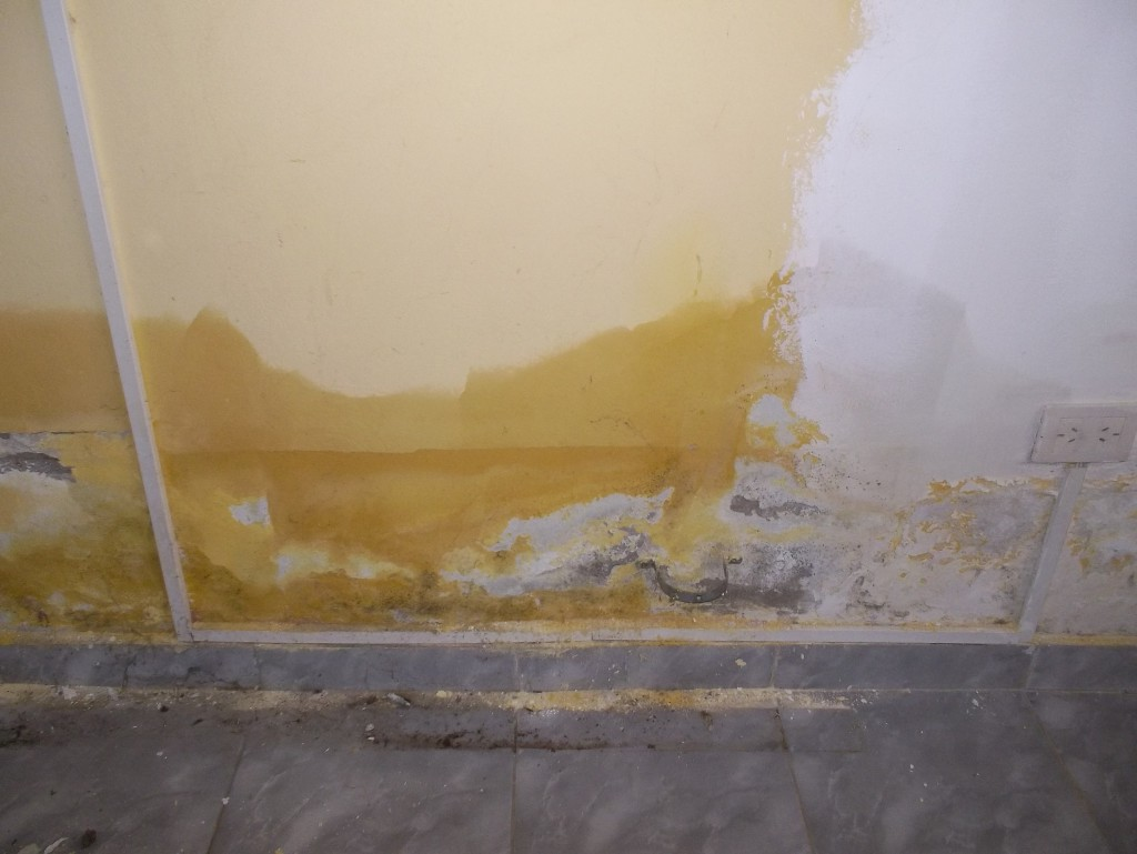 C mo eliminar la humedad del suelo murprotec - Como quitar la humedad de la pared ...