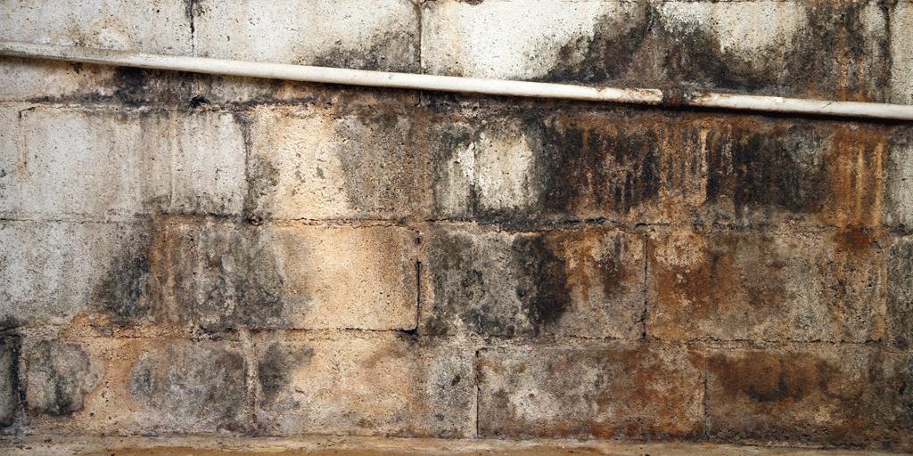 Muro con humedad tratado con electroósmosis