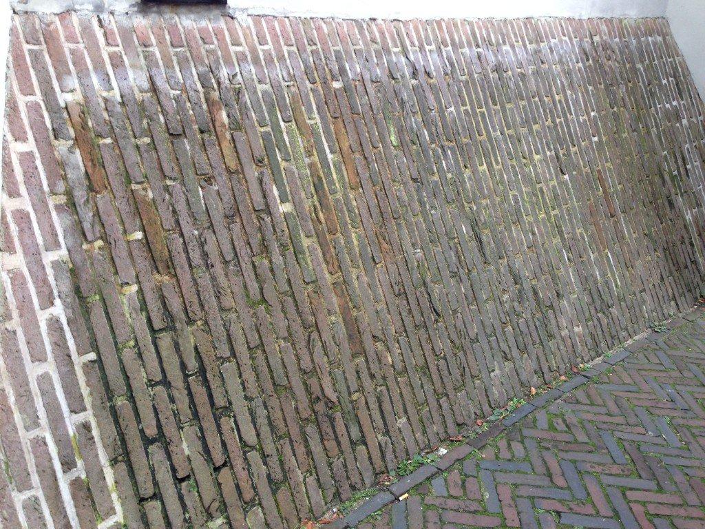 Salitre en las paredes causas y consecuencias murprotec for Paredes que no llegan al techo
