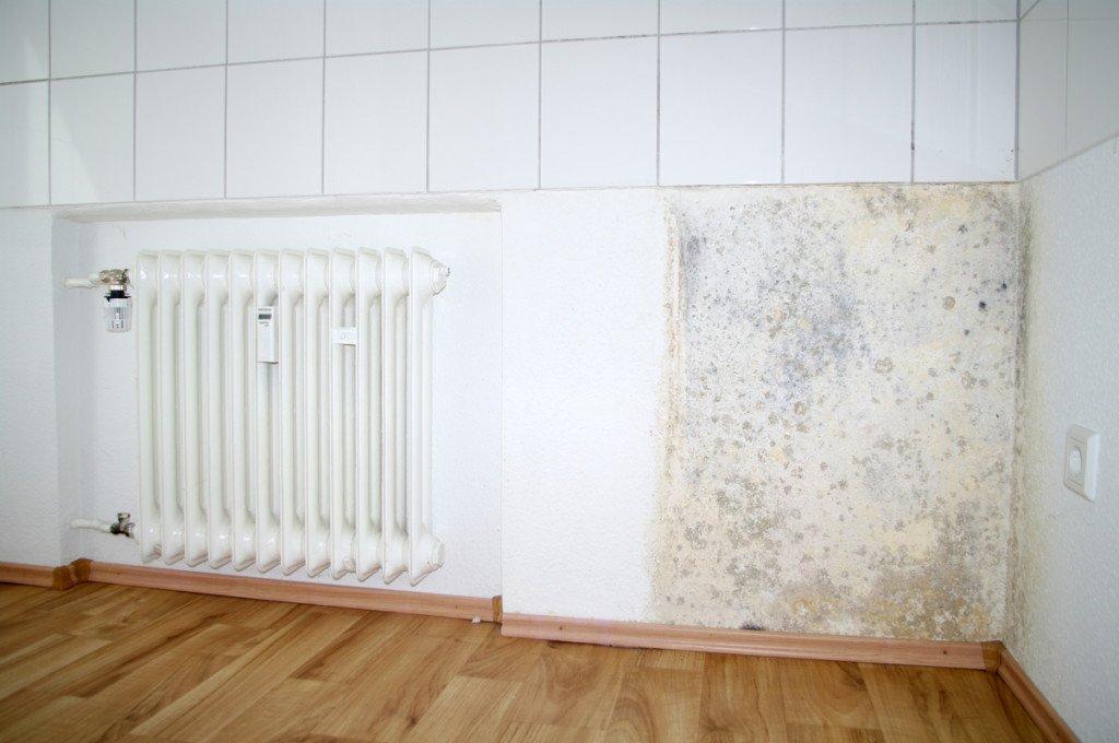 Humedades en los azulejos y paredes
