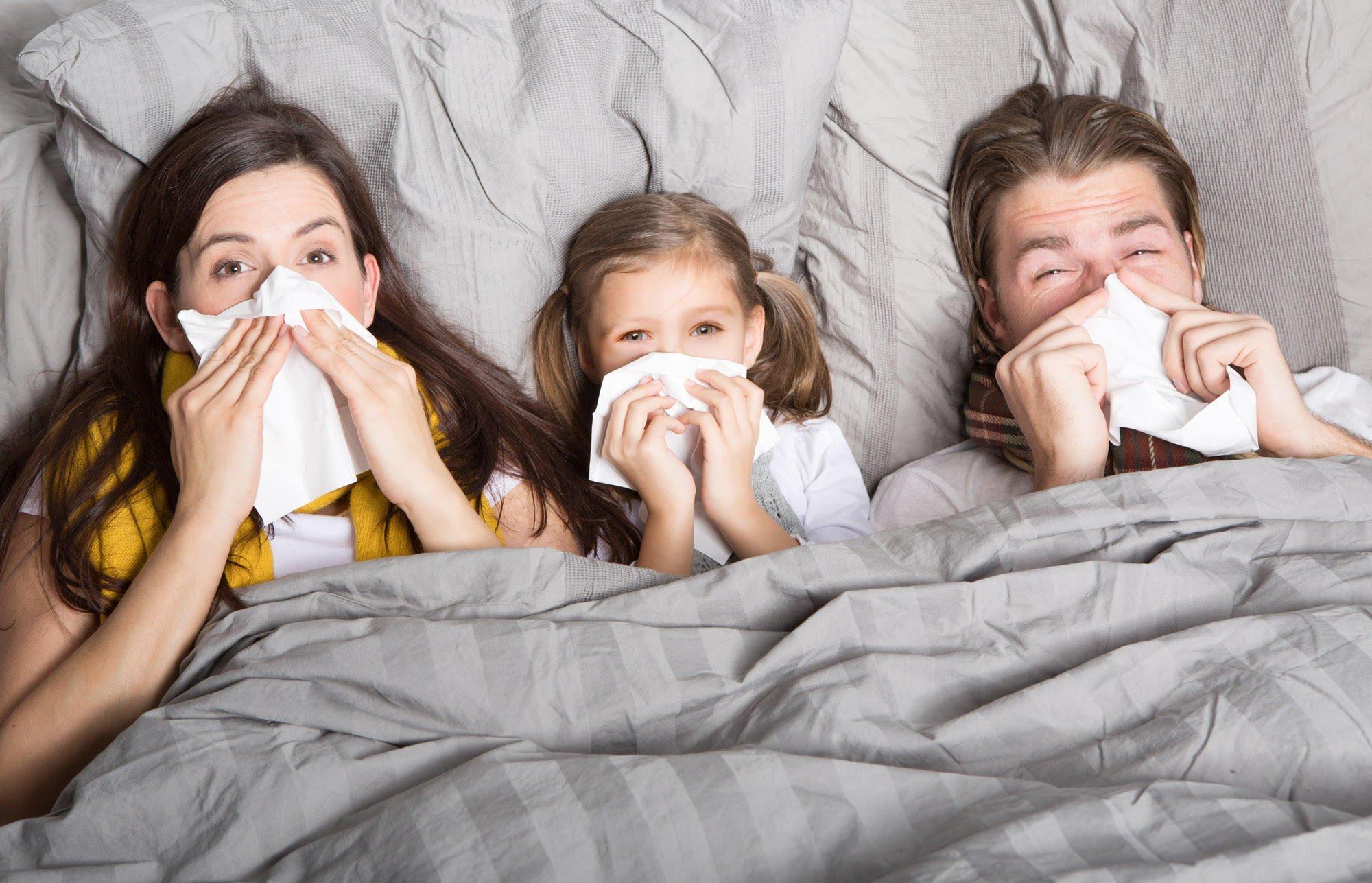 El 19% de familias españolas conviven con humedades poniendo en peligro su salud