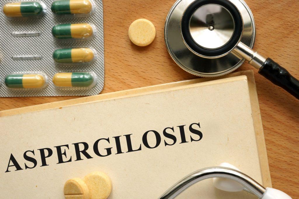 Aspergillus y humedades