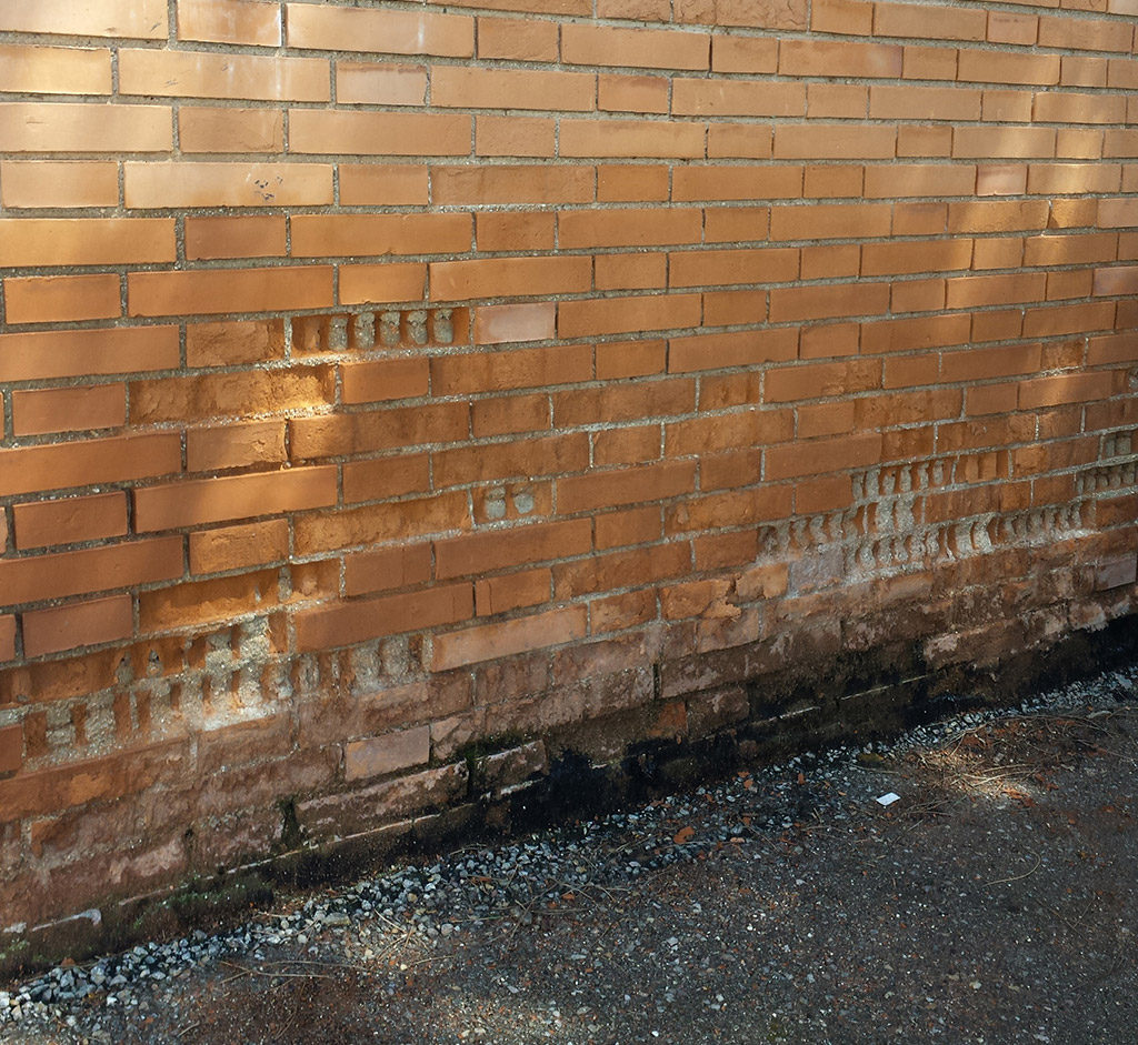 Capilaridad en pared