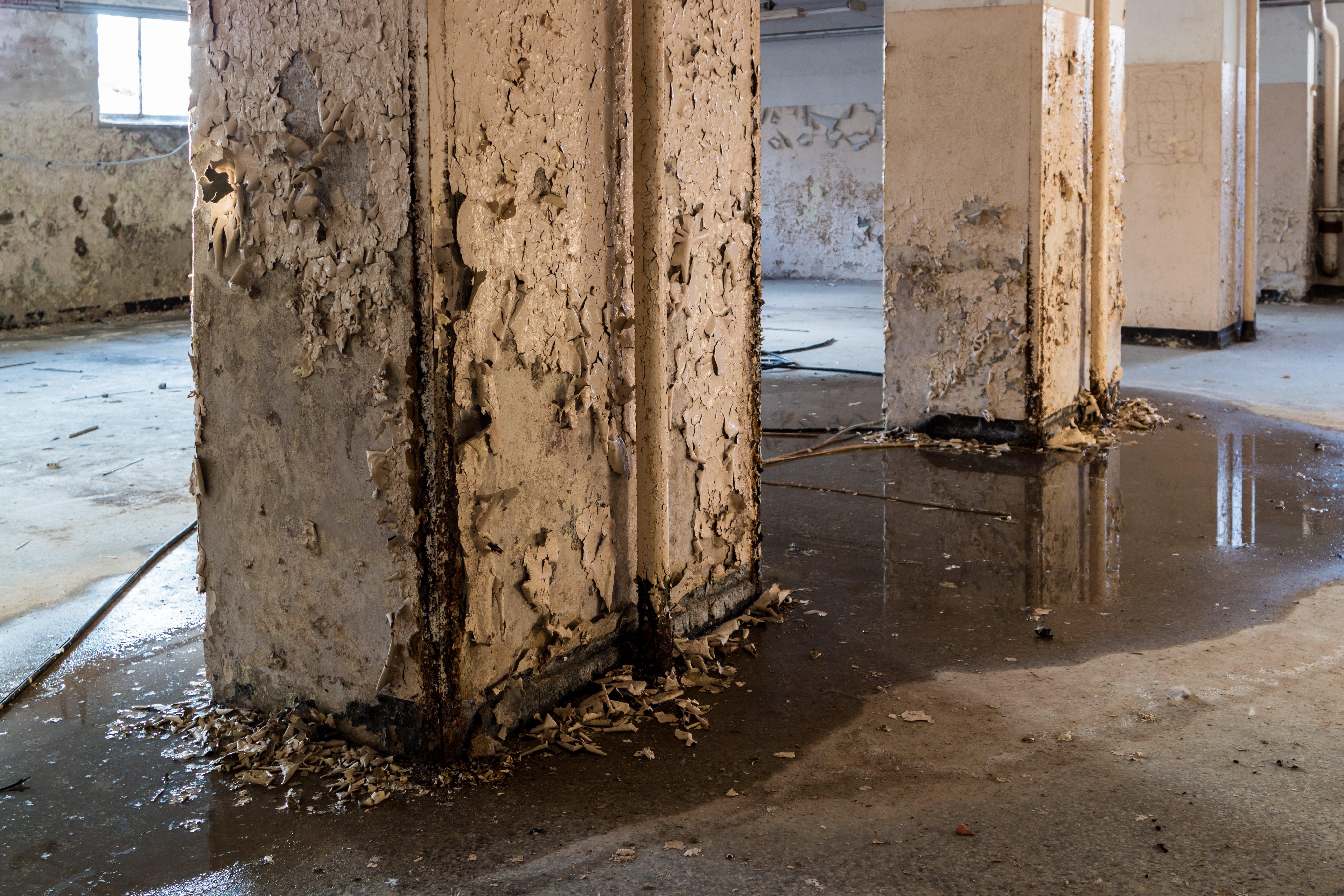 Feuchter Keller Bauschäden