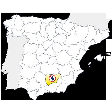Delegación Murprotec Jaén