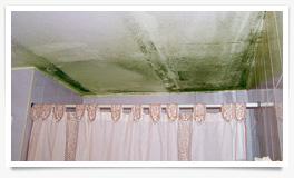 Humedad en en las paredes y el techo