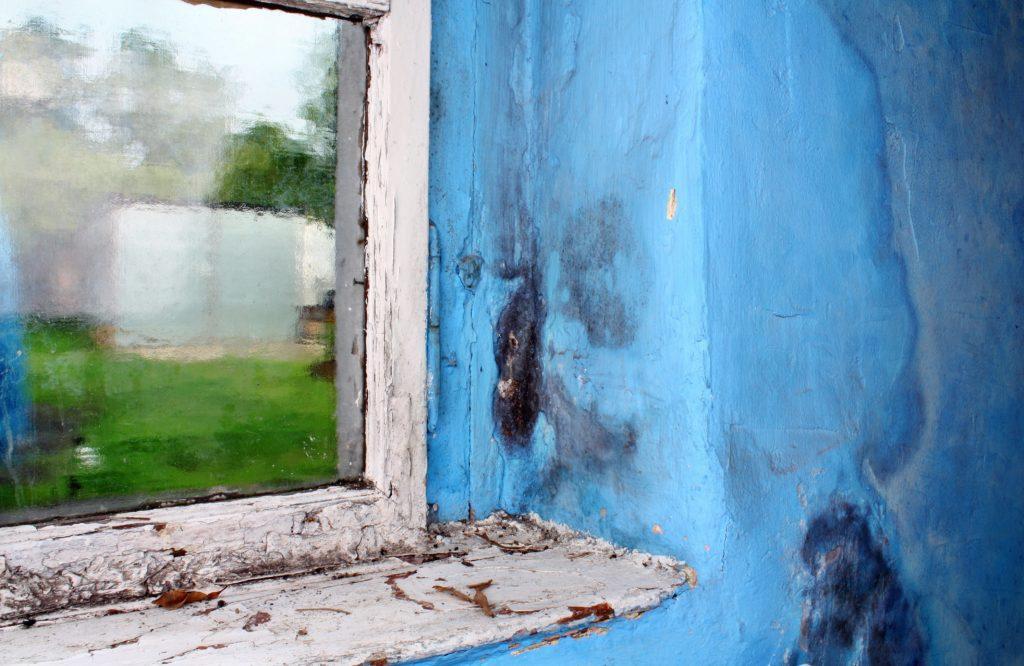 Tipos de humedad - Condensación, Capilaridad y Filtraciones - Murprotec