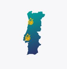 Grupo-portugal