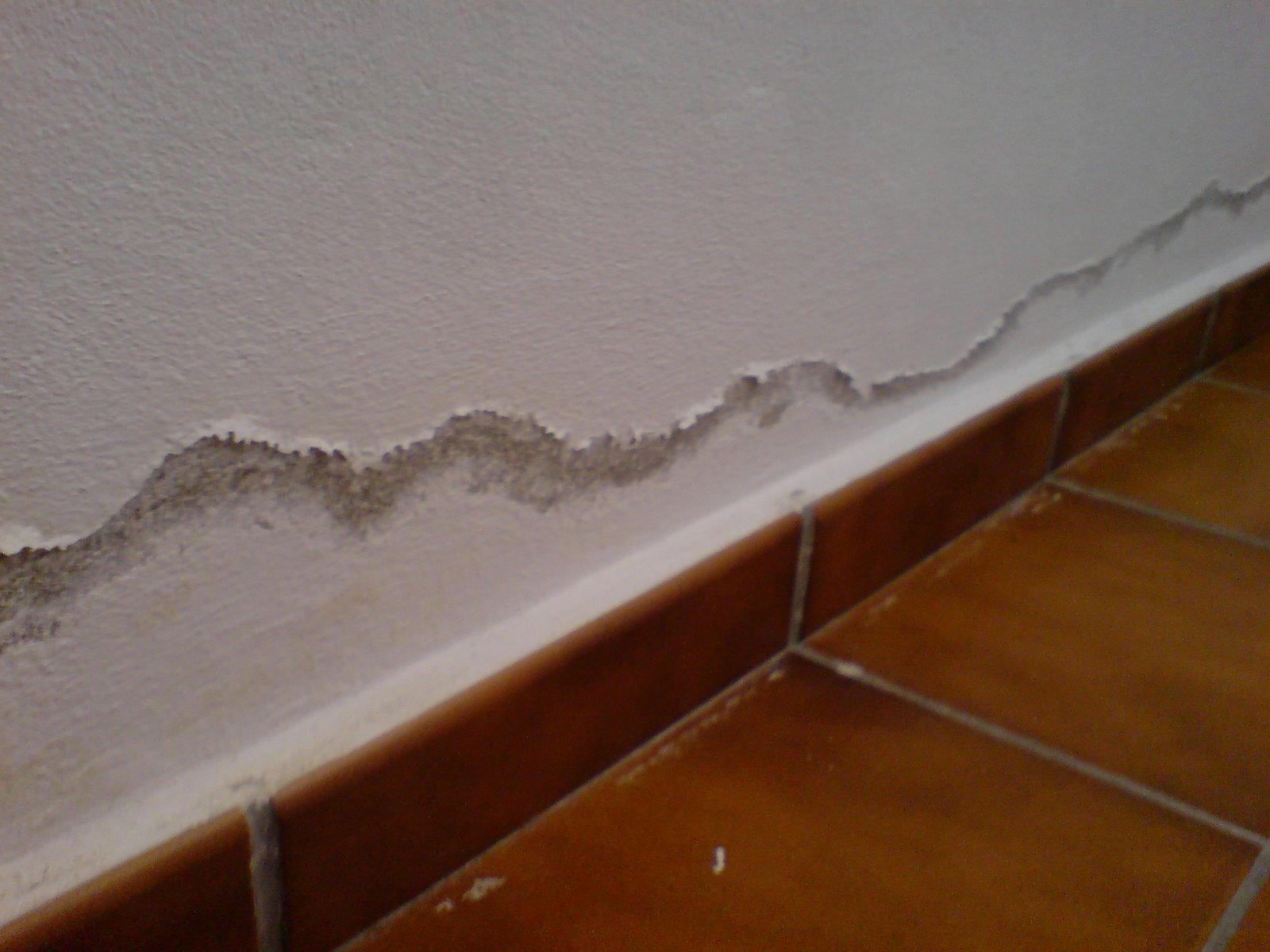 El origen de la humedad por capilaridad est en la tierra - Humedad por condensacion en paredes ...
