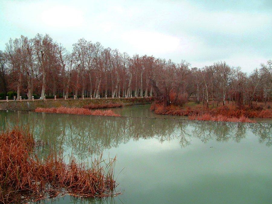 Humedades en Aranjuez por el río Tajo