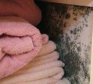 Los armarios, entre los afectados por las humedades