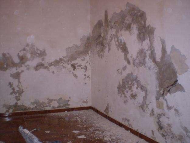 Inform tica isfd17 la humedad afecta a su salud de todos - Humedad en pared ...