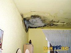 Las goteras y humedades de las viviendas pueden afectar a la salud